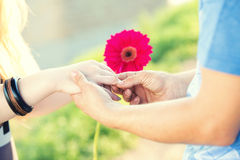 Engagement ring on a flower. In the hands of the bride Stock Images