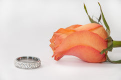 Engagement ring and orange rose on white background Stock Image