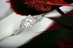 Engagement ring with Red Feathers Surrounding It Stock Photos