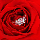 Engagement Ring in Red Rose Stock Image
