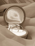 Engagement rings in a box. On cloth royalty free stock images
