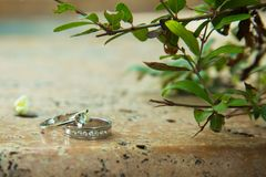 Engagement rings in nature, green background. Love story. Wedding rings on a beautiful leaf branch background. On marble and stone Royalty Free Stock Images