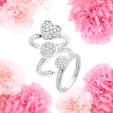Engagement rings on rose background Stock Photography