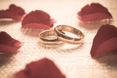 Engagement rings. Two engagement rings on cloth texture with red rose petal Stock Photo