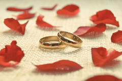 Engagement rings. Two engagement rings on cloth texture with red rose petal Royalty Free Stock Photography