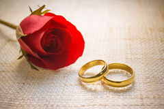 Engagement rings. Two wedding rings on cloth texture with a red rose Royalty Free Stock Photography