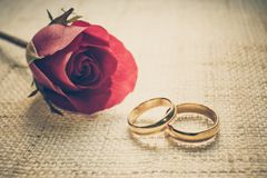 Engagement rings. Two wedding rings on cloth texture with a red rose Stock Images