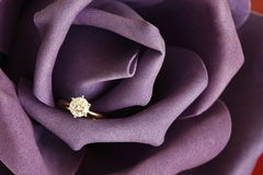 Engagement. Solitaire engagement diamond ring (ideal cut) encrusted on 18K gold ring embedded in purple rose Royalty Free Stock Images