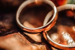 Engagement and wedding ring, autumn wedding concept royalty free stock photography