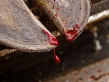 Enganche de la sangría fotografía de archivo libre de regalías