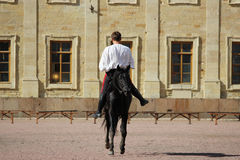 engane a equitação aos homens no garanhão da baía que salta um trote no quadrado da areia na frente do palácio imagens de stock royalty free