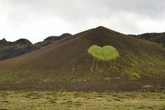Engazonnez le coeur près du lac Kleifarvatn dans Reykjanes, Islande Photos libres de droits