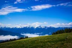 Engazonnez le pré avec le paysage de montagne à l'ouragan Ridge Photographie stock libre de droits