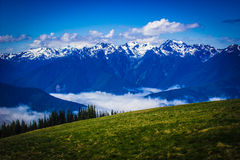 Engazonnez le pré avec le paysage de montagne à l'ouragan Ridge Images libres de droits