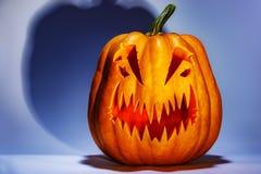 Enge Halloween-pompoen met een schaduw op een gekleurde achtergrond royalty-vrije stock afbeeldingen