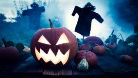 Enge Halloween-pompoen op donker gebied met vogelverschrikkers Stock Foto's