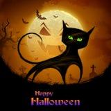 Enge kat in Halloween-nacht Royalty-vrije Stock Afbeeldingen