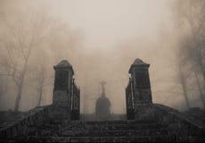 Enge oude ingang aan boskerkhof in dichte mist Royalty-vrije Stock Afbeeldingen
