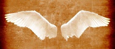 Engel beflügelt auf Schmutzbeschaffenheit in den braunen Tönen lizenzfreie stockbilder