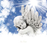 Engel in de zon Stock Foto's