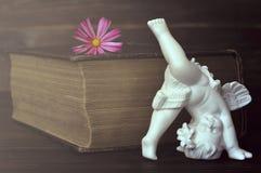 Engel en bloem royalty-vrije stock afbeeldingen