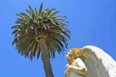 Engel en Palm Royalty-vrije Stock Fotografie