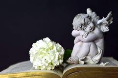 Engel en witte bloem Stock Foto