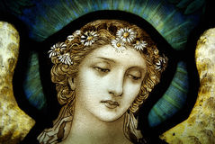 Engel in gebrandschilderd glas Royalty-vrije Stock Foto's