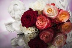 Engel, glücklicher Valentinstag, Spiegelhintergrund lizenzfreie stockfotografie