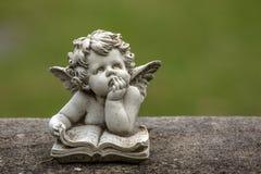 Engel in het lezen van een boek stock foto's