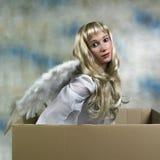 Engel im Kasten Stockbild