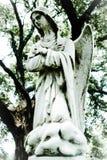 Engel in Jade stock afbeeldingen