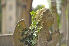 Engel mit Efeu Stockfotografie