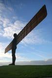 Engel van het Noorden Royalty-vrije Stock Fotografie