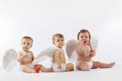 Engelachtige babys Royalty-vrije Stock Afbeeldingen