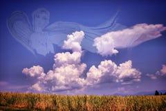 Engelen` s Gesponnen suiker Stock Afbeeldingen
