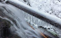 Engelendalingen, de wintertijd met sneeuw en ijskegels, Washington de V.S. stock foto