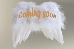 Engelenvleugels en tekst die - spoedig komen royalty-vrije stock afbeelding