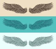 Engelenvleugels geplaatst illustratie, gegraveerde stijl, getrokken hand Stock Afbeeldingen
