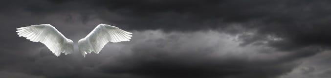 Engelenvleugels met stormachtige hemelachtergrond royalty-vrije stock foto
