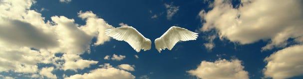 Engelenvleugels tegen blauwe hemel en witte wolken op zonnige dag stock afbeeldingen