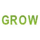 Engels die alfabet van GROW van groen gras op witte achtergrond wordt gemaakt Stock Afbeelding
