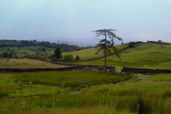 Engels platteland Stock Afbeeldingen