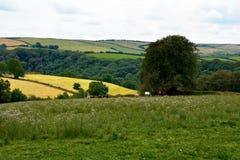 Engels platteland: heuvel, sleep, voetpad, wandeling Stock Foto