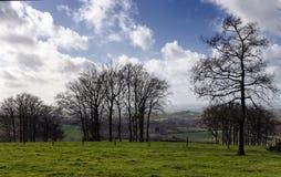 Engels Platteland in Maart Royalty-vrije Stock Foto
