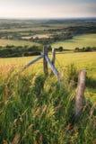 Engels plattelands landelijk landschap in het licht van de de Zomerzonsondergang Royalty-vrije Stock Fotografie