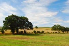 Engels plattelandslandschap Royalty-vrije Stock Afbeeldingen