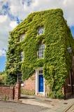 Engels Rijtjeshuis met Virginia Creeper Stock Foto's
