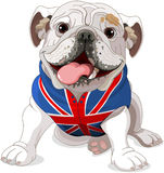 Engelse Buldog stock illustratie