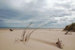Engelse kust Στοκ εικόνα με δικαίωμα ελεύθερης χρήσης